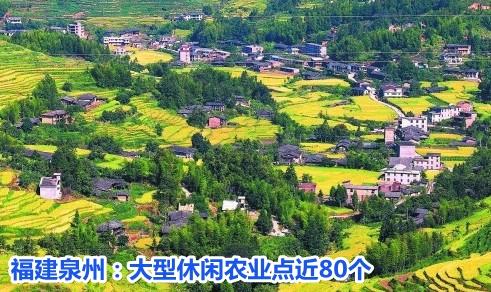 福建泉州:大型休闲农业点近80个