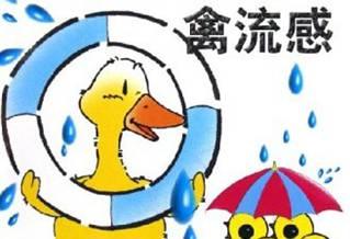 h7n9禽流感最新消息  h7n9禽流感症状汇总