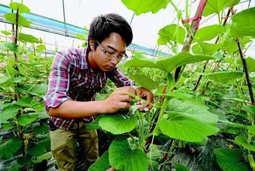 培育新型农民 建设农村未来
