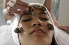 泰国另类美容:活蜗牛脸上爬
