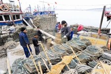 天津滨海新区等沿海春季捕捞即将开始