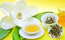 福建福州特产:福州茉莉花茶