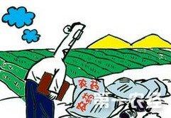 全国化肥农药使用量零增长行动启动图片
