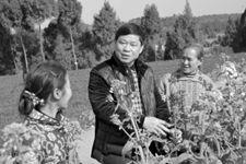 <b>绵阳三台县技术人员下乡服务农户</b>