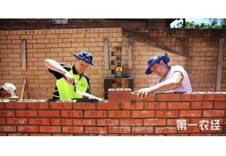 搬砖致富!澳洲搬砖工周薪30000,一起去?
