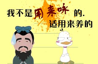 【养鹅专题】养鹅技术|视频