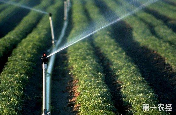 农业节水灌溉十四年用水总量零增长