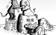 """粮仓""""硕鼠""""横行:""""以陈顶新""""骗取国家补贴"""