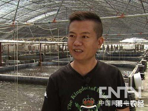 """漳州东山""""养鲍大王""""林拱辉的鲍鱼养殖致富经"""