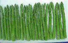 绿芦笋的种植前景分享