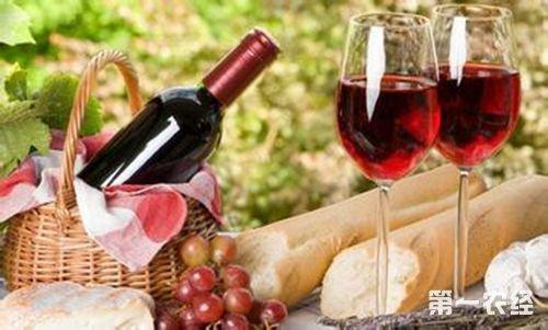 西藏特产美酒:盐井葡萄酒