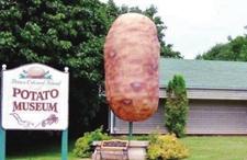 """走进你所不知道的""""土豆传奇""""世界"""