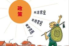 """2015年我国""""三农""""相关政策措施"""