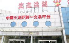 """<b>洪湖小龙虾成""""网红""""了:湖北洪湖打造""""中国小龙虾第一交易平台""""</b>"""
