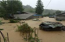 我国南方持续性强降雨已致11省份受灾15人死亡