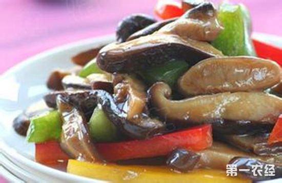 河北承德特产美食:油焖鲜蘑