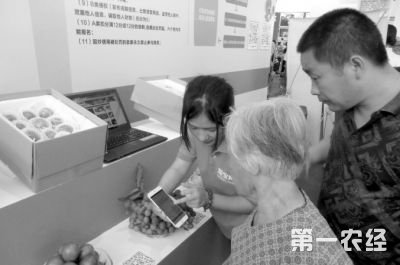 海南屯昌农民博览会特色农产品销售额达342万元