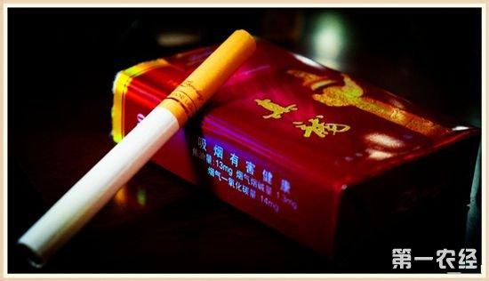广西特产:真龙牌香烟