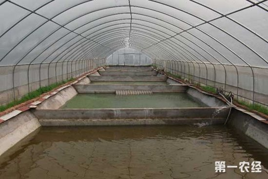 兰溪市水务局调研甲鱼养殖污染整治工作