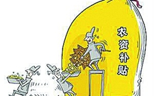 江苏泰州姜堰下发粮农补贴 农资补贴为4739.6万元