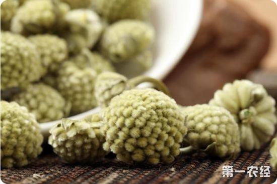 西藏拉萨特产茶:绿萝花茶