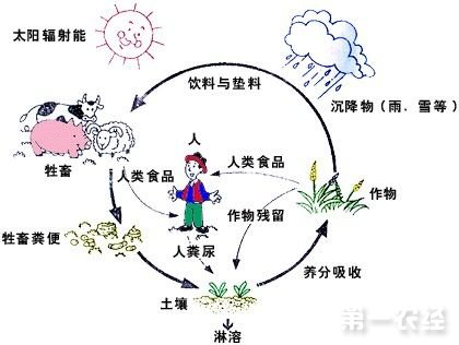 推动农村产业结构调整