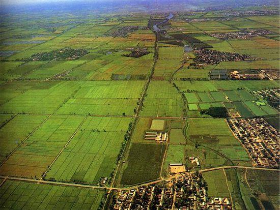 专家解析农用水危机该怎样破解应对-产业观察-国农