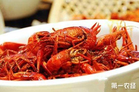 安徽蚌埠特产美食:大蚂虾