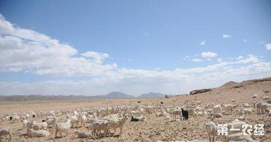 旱情报告 内蒙古超七成土地干旱 华北中东部降水有望缓解旱情