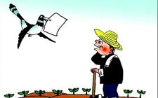 惠农政策有哪些? 来宾惠农政策实录