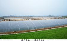 """文化农业助力现代化农业发展  """"十三五""""现代农业发展规划启动"""