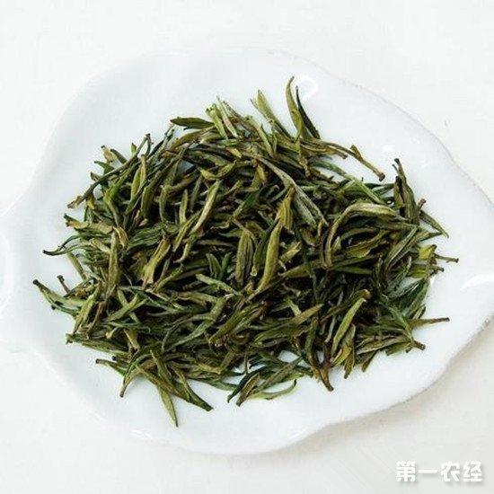贵州特产名茶:石阡苔茶