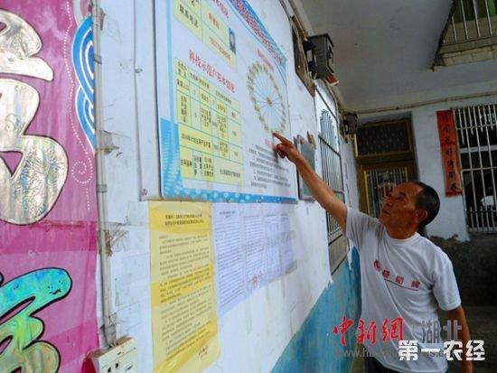 墙报版面设计图学生书写,绘画,手工技能