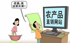 """农产品搭电商""""快车""""难题多 临沭调研农产品电商现状"""
