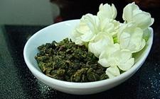 【独家】茉莉花茶怎么制作?