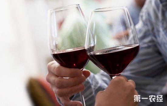 葡萄酒须知:喝红酒有什么礼仪?