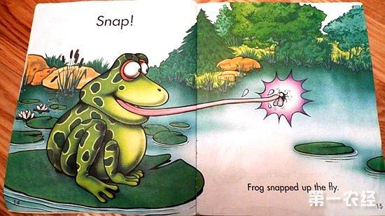 青蛙的特点和本领
