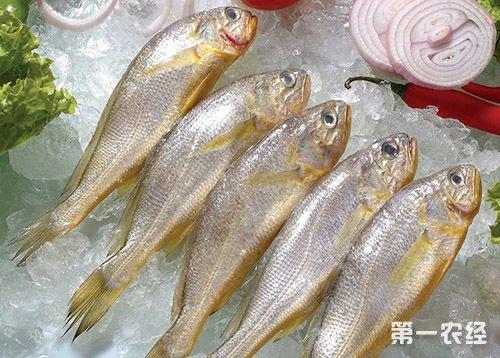 辽宁省沈阳市皇姑区山海滨海鲜批发部经营的 虾爬中检出禁止添加的非