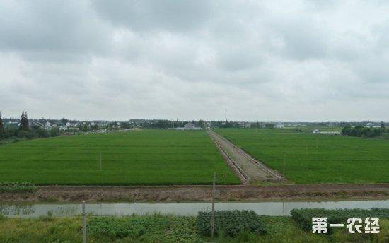235亿中央财政下拨高标准农田建设