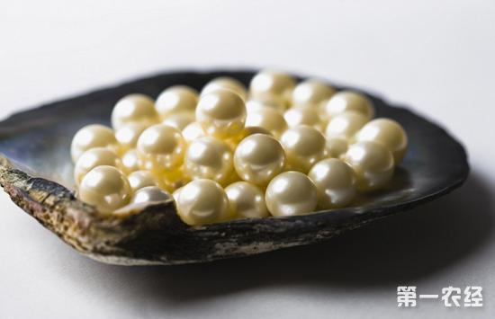苏州吃的特产有哪些_江苏苏州特产:太湖珍珠