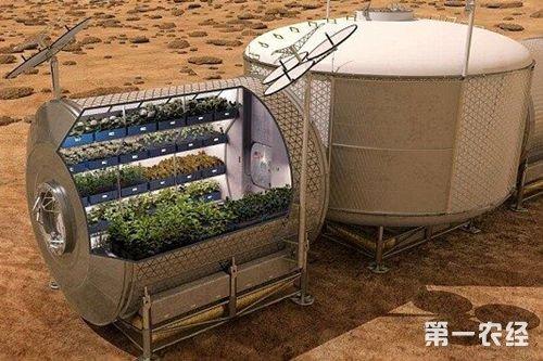 航天育种:类太空环境培育蔬菜