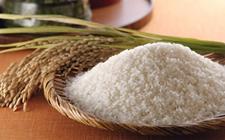 <b>哈尔滨东鹏米业等米企售假冒五常大米被查</b>