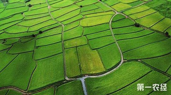 14市试水永久基本农田  国土资源部农业部联合督导