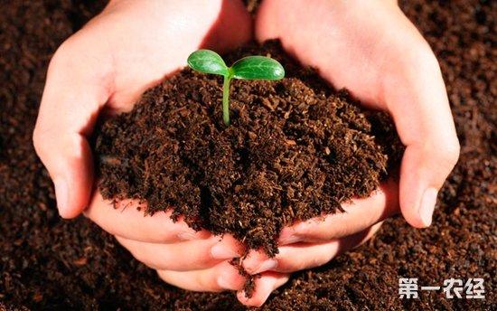保监会:农业保险产品即将升级
