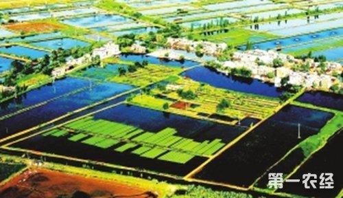 广东珠海:打造西岸最大农业深加工产业园