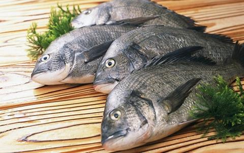 专家解读水产品中的鱼浮灵作用