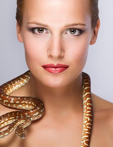 蛇乡会蛇(2)