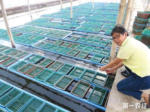 青蟹养殖笼结构图纸
