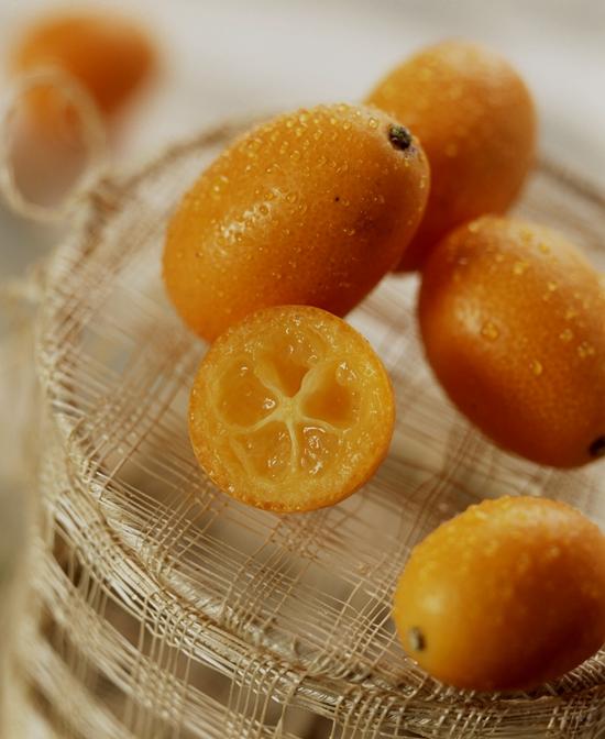存在树上 金橘能卖到四月