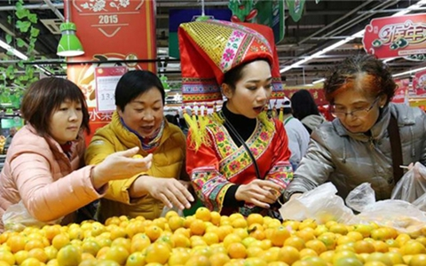 广西融安农超对接促农民增产增收
